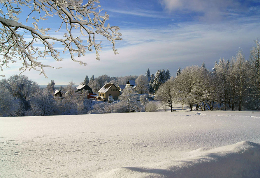 Ferienwohnanlage Friedrich, Winter