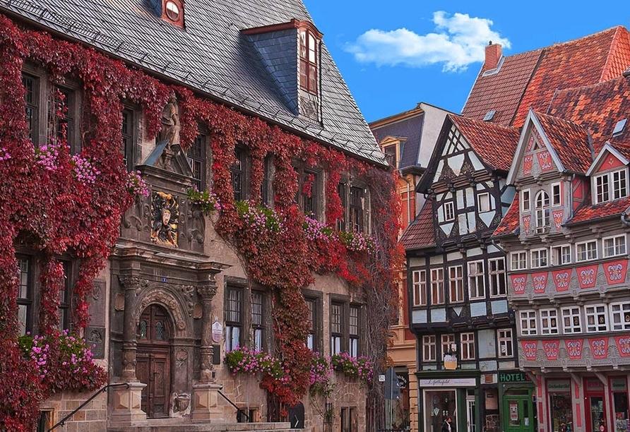 Ferienwohnanlage Friedrich, Quedlinburg