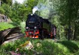 Ferienwohnanlage Friedrich, Selketalbahn