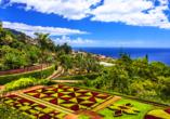 Hotel Estrelícia in Funchal auf Madeira, Botanischer Garten