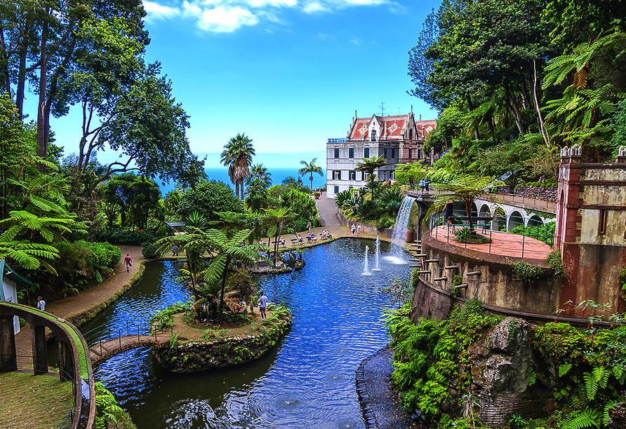 Hotel Estrelícia in Funchal auf Madeira, Tropischer Garten