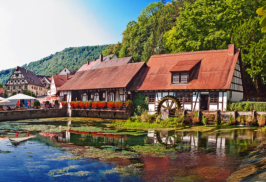 Hotel Gasthof Zum Ochsen in Ehingen, Ausflugsziel Blaubeuren