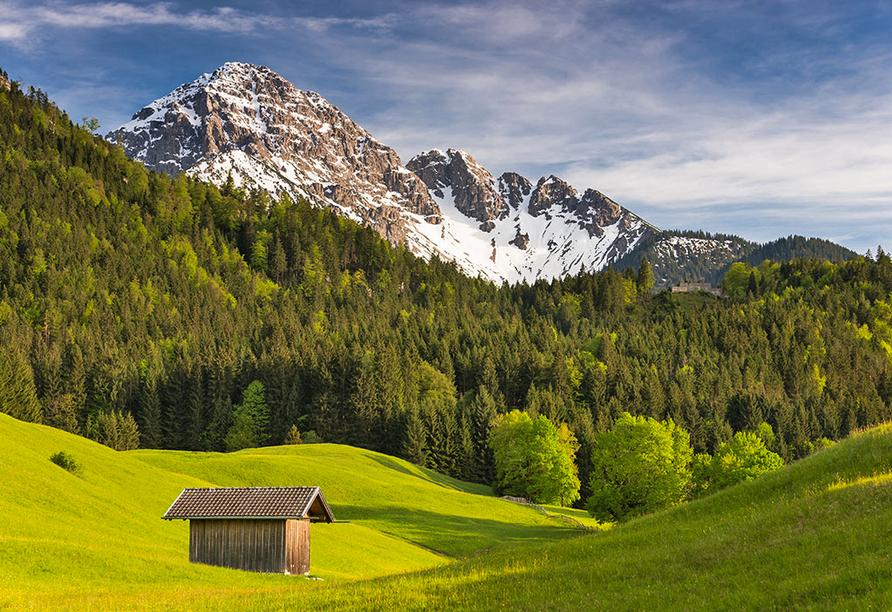 Best Western Panoramahotel Talhof in Wängle bei Reutte in Tirol, Landschaft