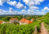 WEST Hotel Radebeul, Dresden, Schloss Wackerbath in Radebeul
