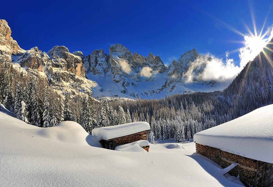 Hotel Bellamonte in Predazzo, Val de Veneggia