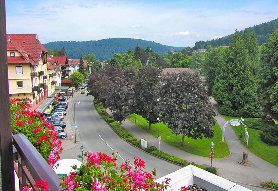 Hotel Harzer Bad Herrenalb, Ausblick