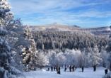 Die schneebedeckte Winterlandschaft im Harz wird Sie verzaubern.