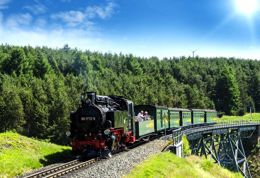 Erzgebirgshotel Bergschlösschen, Fichtelbergbahn