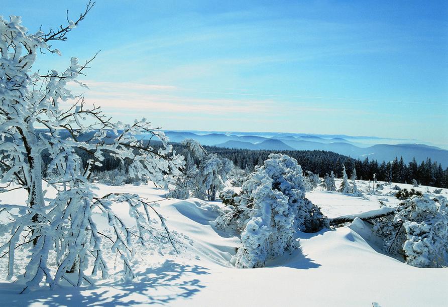 Höhenhotel Pfeifle in Baiersbronn im Schwarzwald, Winterlandschaft