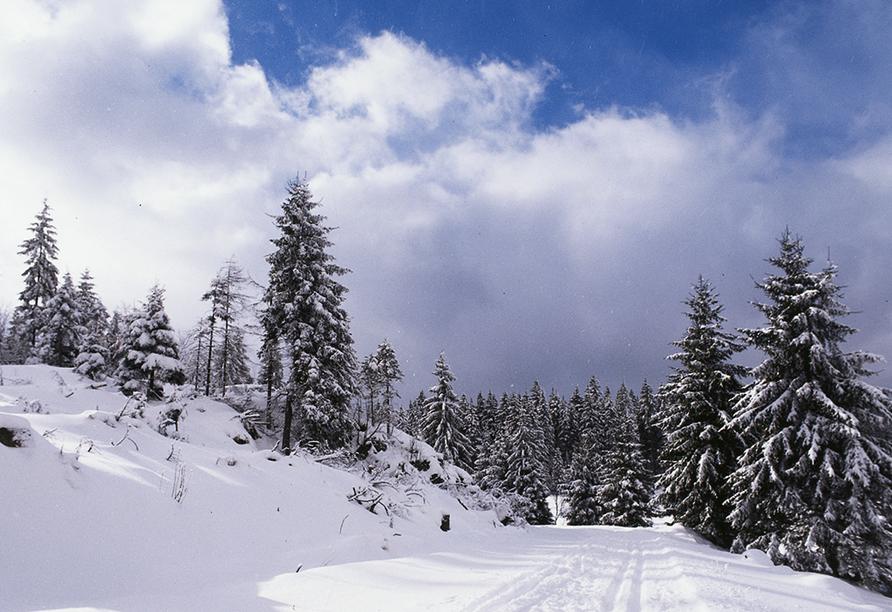 Landhotel Osterlamm, Idylle im Winter
