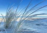 Ferienpark Benz Ostsee, Düne mit Schnee und Frost