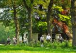Art & Wellness Hotel Huis Ten Wolde, Radfahren