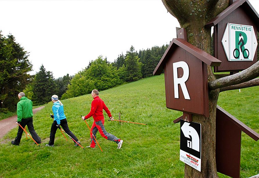 Berghotel Oberhof Thüringer Wald, Wanderung Rennsteig
