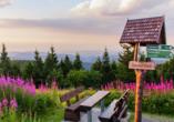 Berghotel Oberhof Thüringer Wald, Sonnenuntergang auf dem Schneekopf