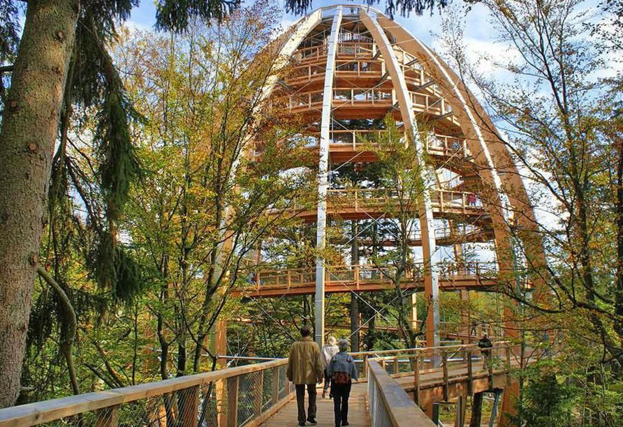 Hotel Stark in Ringelai im Bayerischen Wald, Baumwipfelpfad