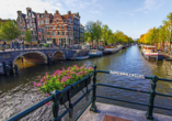 DCS Alemannia, Amsterdam