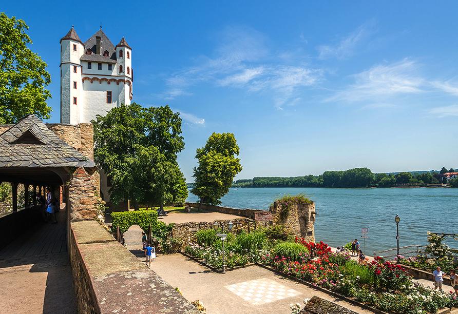 Parkhotel Sonnenberg in Eltville am Rhein, Blick