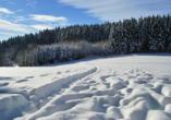 Hotel Ferien vom Ich in Neukirchen im Bayerischen Wald, Winter