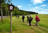 Hotel Rennsteig Masserberg im Thüringer Wald, Wandern