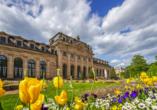 Statten Sie der Orangerie in Fulda einen Besuch ab.