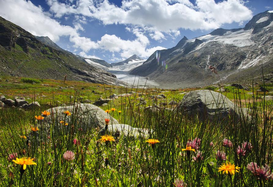 Alpengasthof Geisl in Bramberg am Wildkogel, Wildkogel