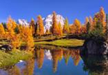 Naturhotel Wieserhof in Ritten in Südtirol, Ausflugsziel Dolomiten