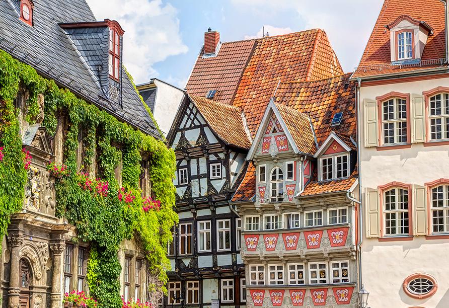 Hotelferienanlage Friedrichsbrunn, Quedlinburg