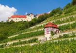 Hotel Himmelsscheibe & Schloss Nebra, Freyburg