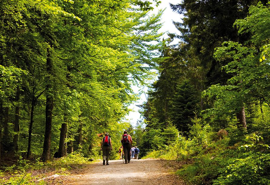 Schwanen Resort in Baiersbronn, Wandern