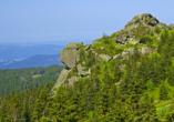 Waldhotel Seebachschleife in Bayerisch Eisenstein im Bayerischen Wald, Ausflugsziel Großer Arber