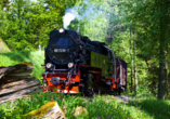 Harmonie Hotel Rust in Braunlage-Hohegeiß im Harz, Ausflugsziel Schmalspurbahn