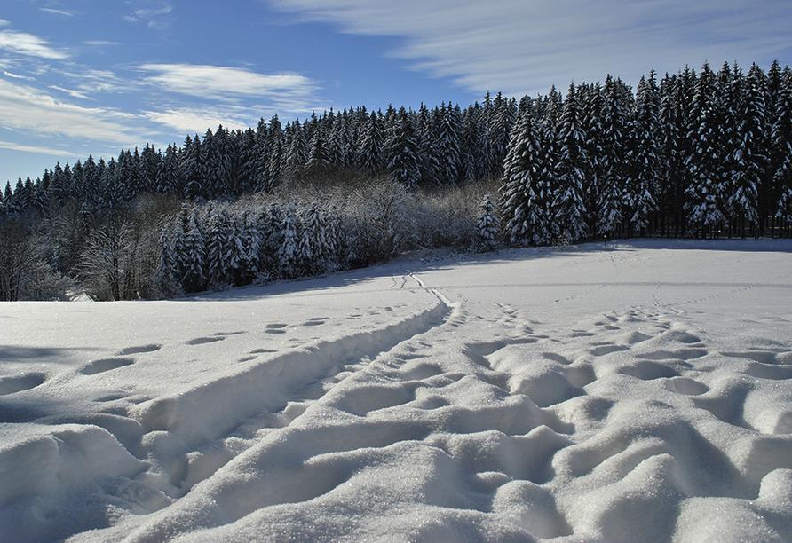 Sattelbogener Hof, Traitsching, Bayerischer Wald, Außenansicht