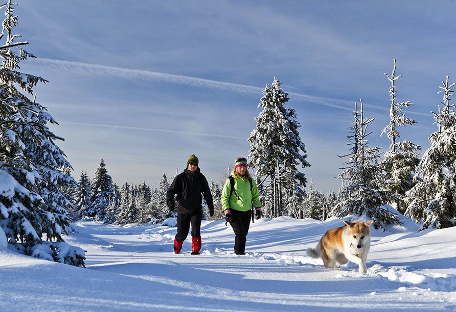 Sporthotel Sonnenhof, Sonnen, Bayerischer Wald, Schneelandschaft