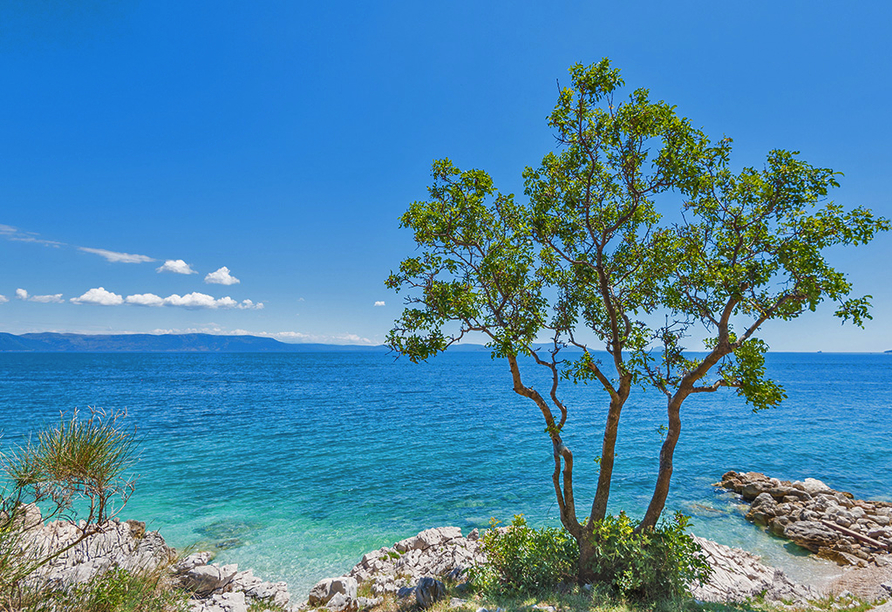 Residence Mobile Homes Oliva, Rabac, Istrien, Kroatien, Küste