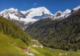 Berghotel Alpenrast in Rein in Taufers Südtirol, Aussicht