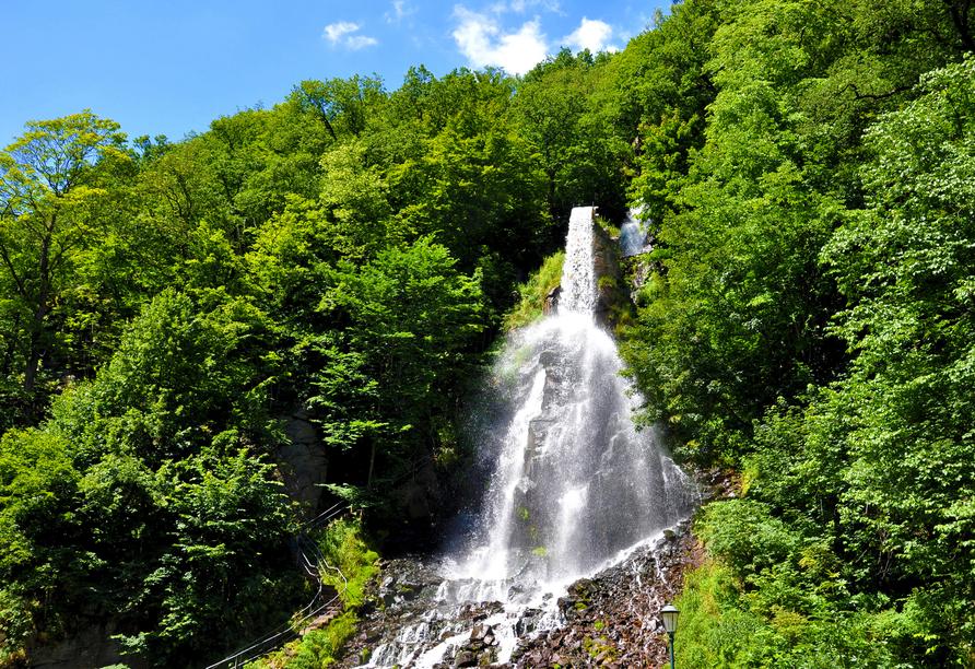 AHORN Berghotel Friedrichroda in Friedrichroda im Thüringer Wald, Ausflugsziel Trusetaler Wasserfall
