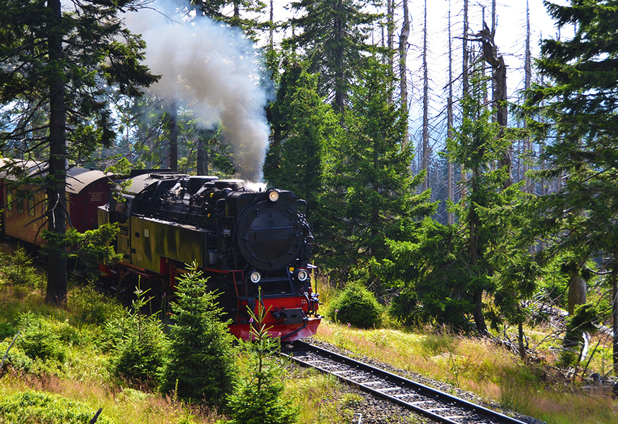 CAREA sunotel Kreuzeck in Goslar-Hahnenklee im Harz, Schmalspurbahn