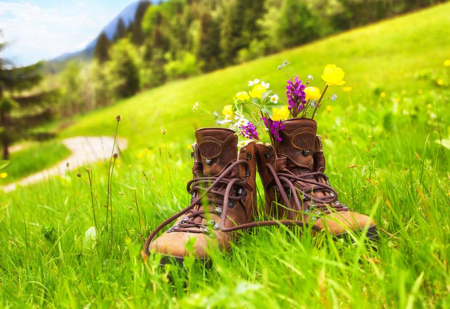 CAREA sunotel Kreuzeck in Goslar-Hahnenklee im Harz, Wanderschuhe auf Sommerwiese