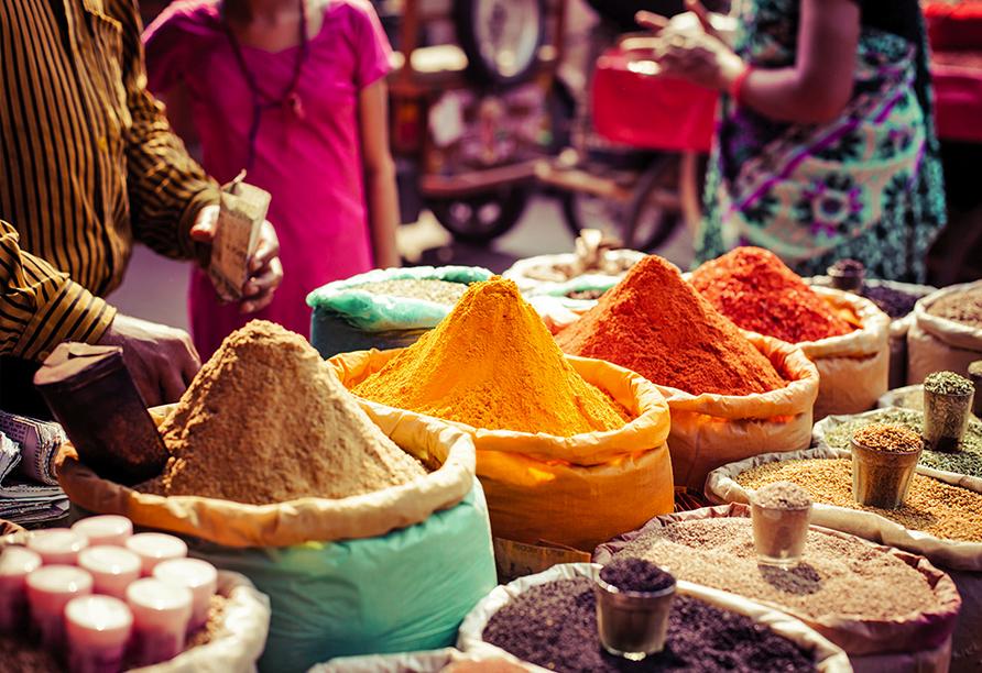 Erlebnisreise Indien, Gewürze