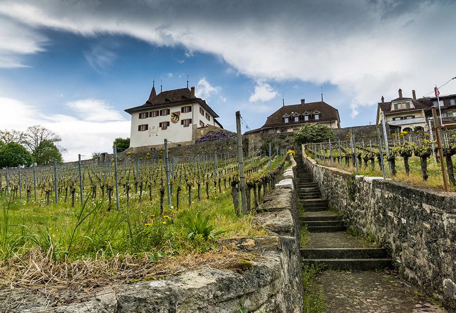 Hotel Dufour, Biel-Bienne, Schweiz, Erlach