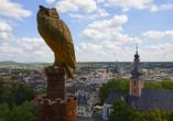 PRIMA Hotel Schloss Rockenhausen, Bad Kreuznach