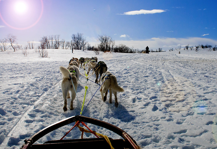 MS Nordkapp, Husky-Abenteuer