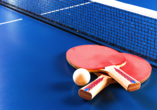 Reiterhof Runding, Tischtennis