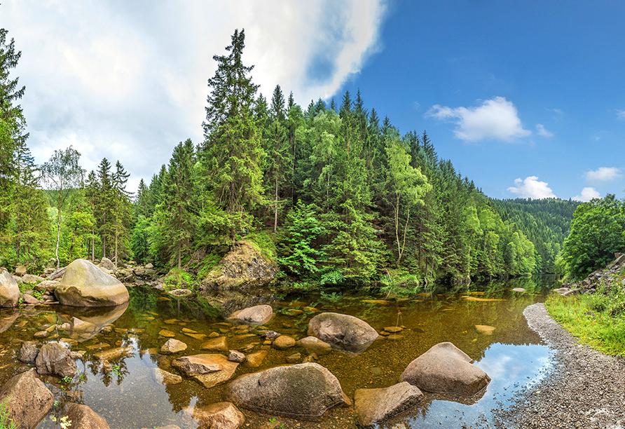 Mühl Vital Resort, Harz