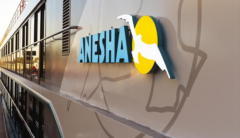 MS Anesha, Außenansicht