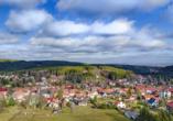 Ferien Hotel Rennsteigblick in Friedrichroda, Ausblick