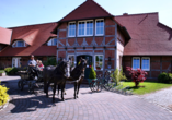 Flair Seehotel Zielow in Ludorf, Kutschfahrt