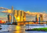 MS Alena, Rotterdam