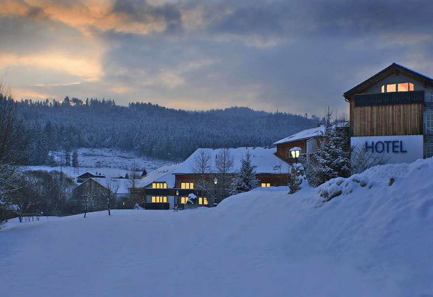 Hotel am Pfahl in Viechtach, Außenansicht Winter