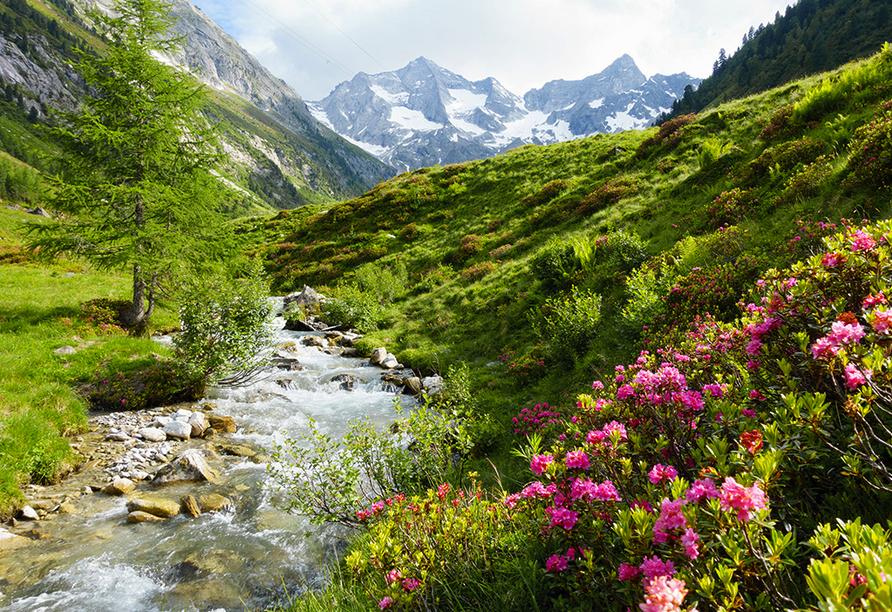 Alpenhotel Ramsauerhof, Zillertal